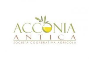 logo dell'azienda acconia antica